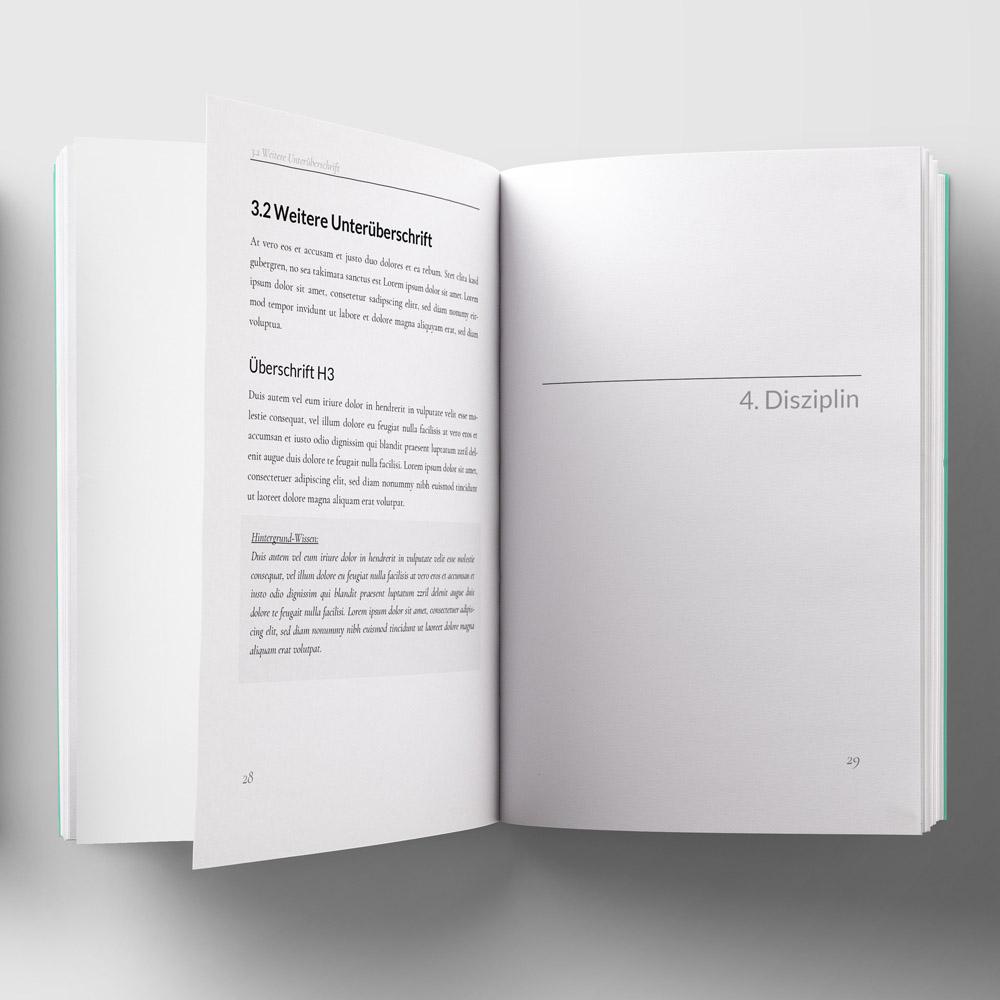 Mindset Taschenbuch-Vorlage Vorschau-PDF