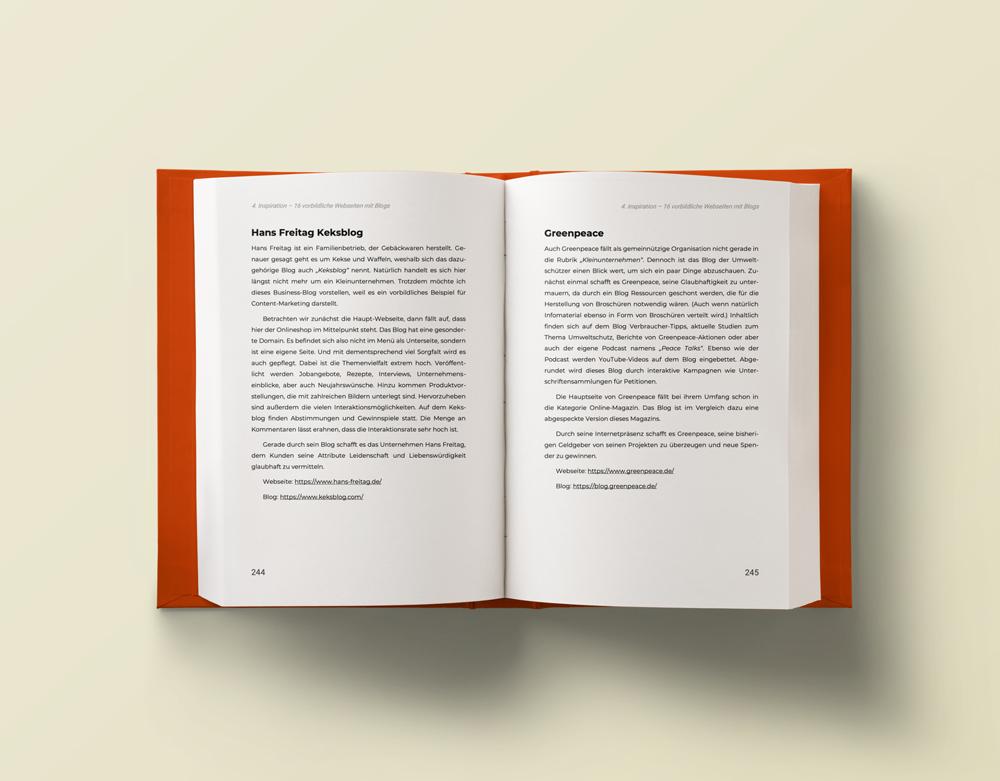 Texte schreiben Buch Mockup Seite 244-245